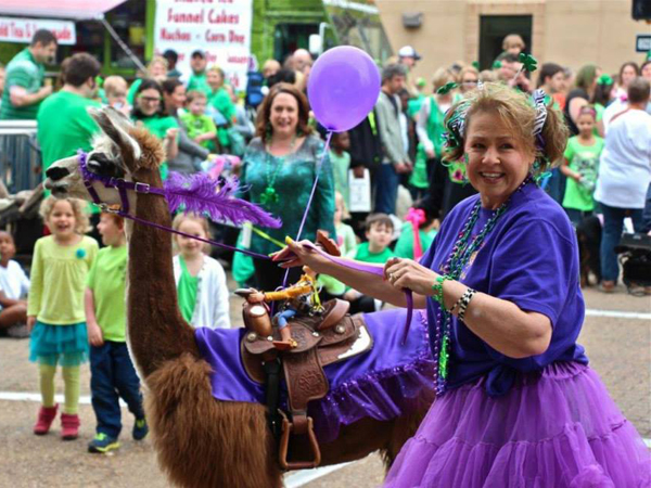 Everyone loves a pet parade, especially one that features a llama.