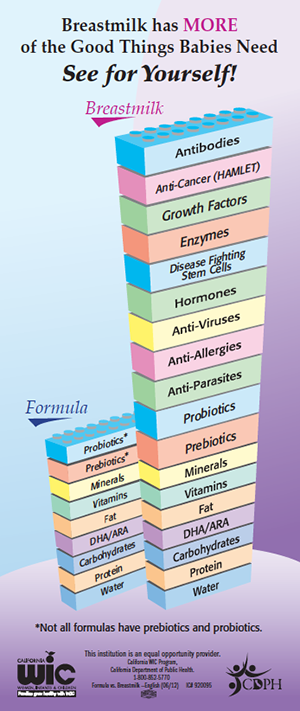 "A ""Lego stack"" illustration comparing the components of formula and breastmilk (Image credit: California Department of Public Health)"