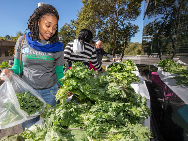 Girl examines fresh vegetables at an outdoor farmers market.