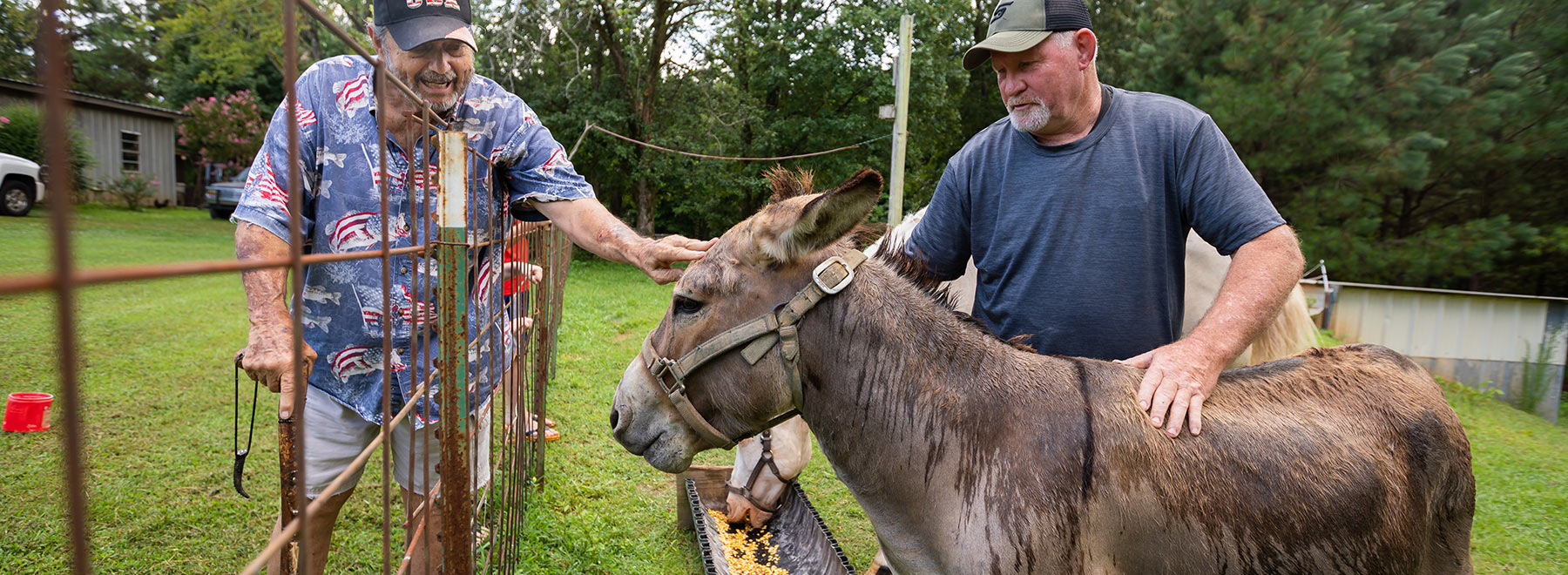 AirCare, blood clotting drug save man from death by donkey bite