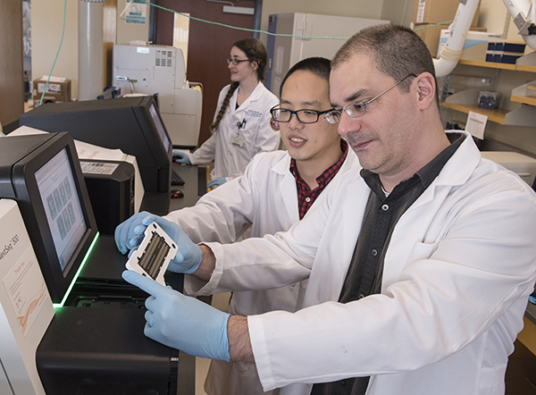 Dr. Ashley Robinson, foreground, and Xiao Luo prepare to load a DNA chip on a sequencing machine in UMMC's genomics facility.