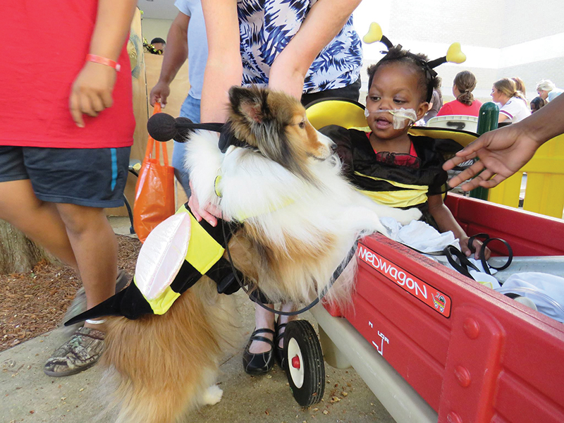 Kamiya Wofford of Cedar Bluff greets Lyla, a pet therapy dog, at a Batson Children's Hospital fall festival Oct. 31, 2016.