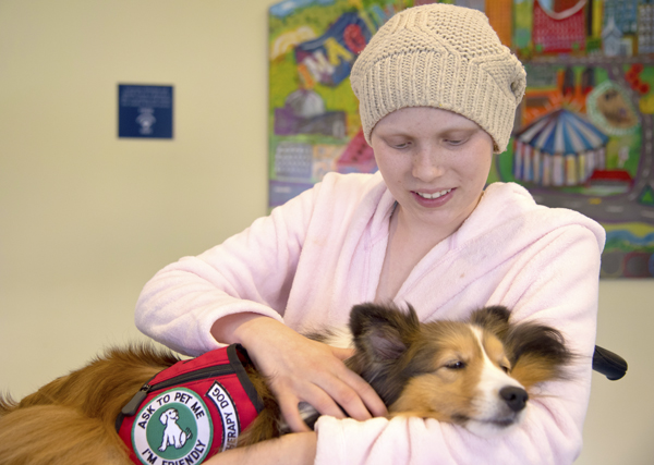 Teacher's pets: Dogs help therapists mend bodies, hearts