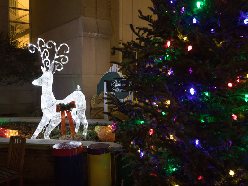 The Rainbow Garden between Batson Children's Hospital and Wiser Hospital for Women and Infants is aglow for the season with reindeer, a Christmas tree and other holiday decorations.