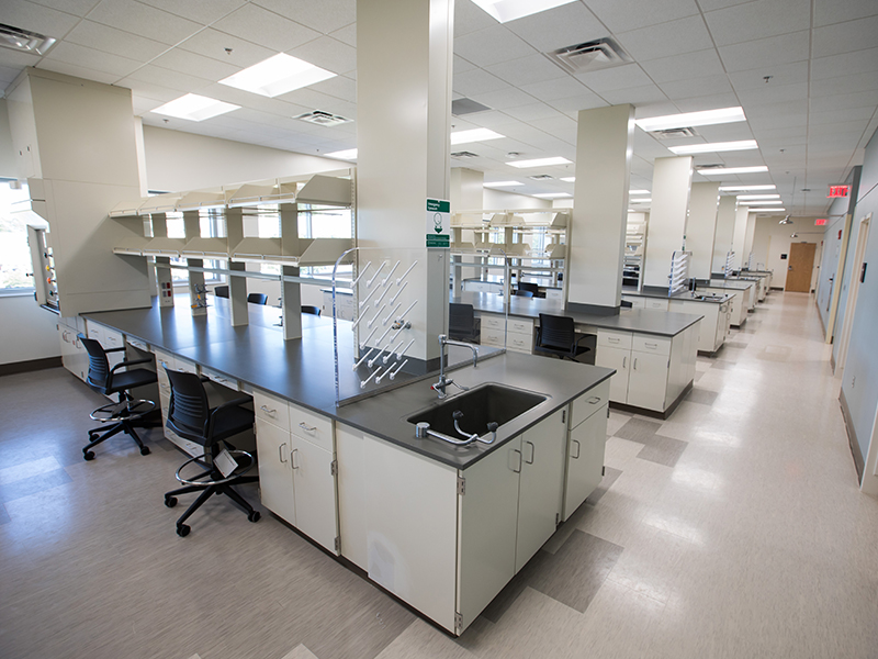 The Neuro Institute's laboratory space is designed facilitate the sharing of ideas and innovations in order improve treatment for addiction, neurotrauma and stroke.