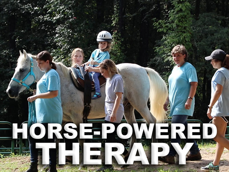 Video: Saddle up! SHRP students' activities bolster horse trail therapy