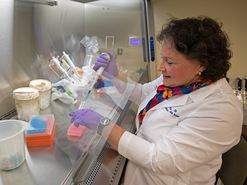 Dr. Nita Maihle, CCRI associate director for reseach, checks on work in her lab.