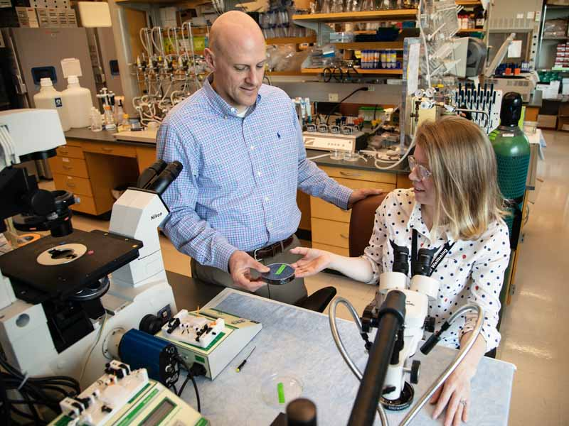 Dr. Mike Ryan, left, works with Ph.D. student Elena Dent in their lab. Ryan, a professor of physiology and biophysics, won the 2019 Regions TEACH Prize.