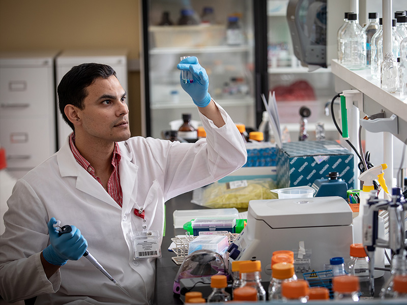 Dr. Edgar Torres Fernandez, a postdoctoral fellow in cell and molecular biology, studies polycystic ovary syndrome.