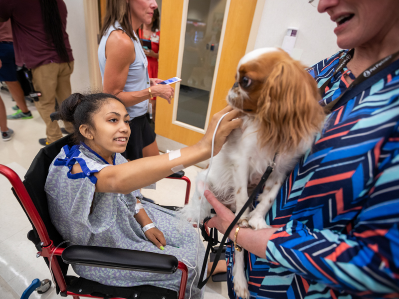 LaDya Graham of Jackson, a Children's of Mississippi patient, pets Ollie the therapy dog.